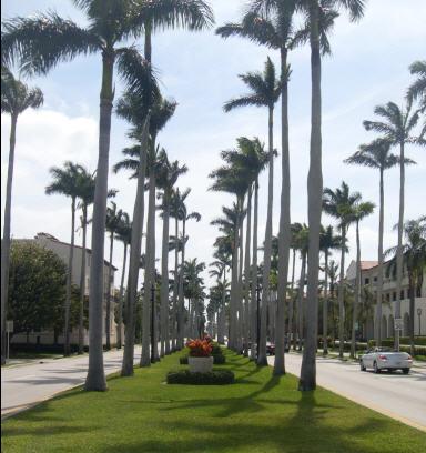 il n y a pas que des palmiers en floride maison blanche. Black Bedroom Furniture Sets. Home Design Ideas